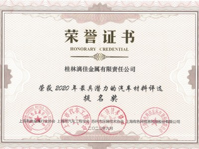 """Guilin Lijia awarded Nomination of """"2020 Most Promising Automotive Material"""""""